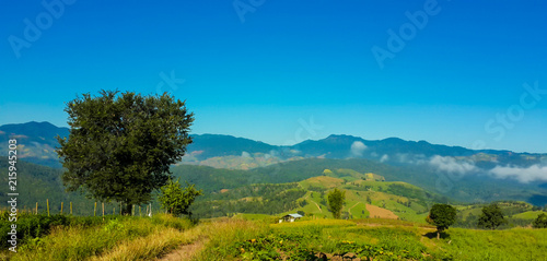 Aluminium Blauwe jeans Panoramic View Of Agricultural Field Against Sky in Chiang Mai Thailand.
