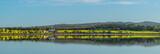 Canola Farm by the Lake Panorama