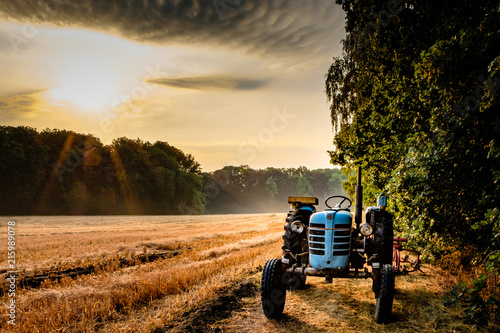 Foto Spatwand Trekker Old tractor in a field on a summer morning with the sun coming up