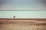 Cavalier regardant la mer