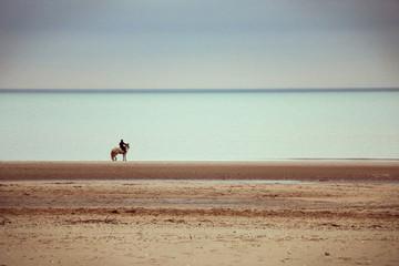 Cavalier regardant la mer © Remygd