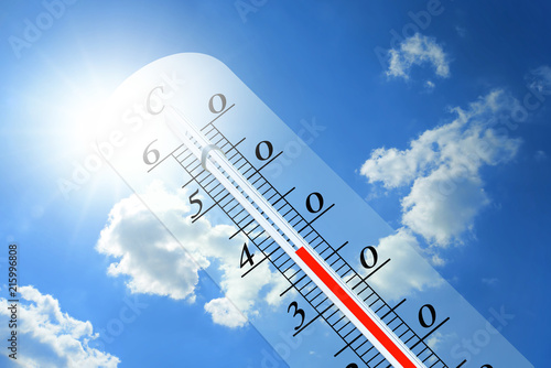 Thermometer 110