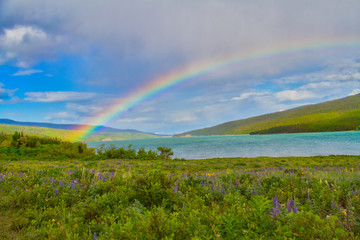 A Rainbow over a Lake and Prairie
