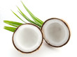 coconuts with leaves isolated on the white - 216056813