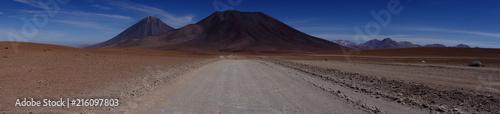 Canvas Cappuccino Wüstenlandschaft mit Steppe vor Vulkan-Kulisse