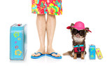 dog and owner on summer vacation holidays