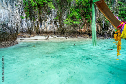 Fotobehang Groene koraal Monkeys on Beautiful Bay Tropical Beach blue ocean background