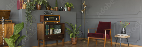 Radio on wooden cabinet in retro grey living room interior with plants and red armchair. Real photo