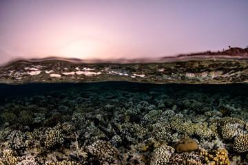 Sunset splits / Sunset overunders © Marcel