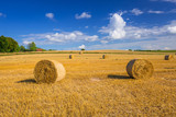 Hay bales on the field after harvest in Poland - 216208846
