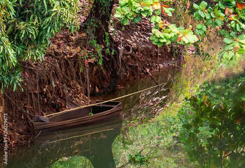Canvas Rio de Janeiro Canoa parada de baixo de árvore na margem do rio