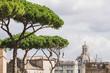 Quadro The scene of the cityscape in Rome, Italy.
