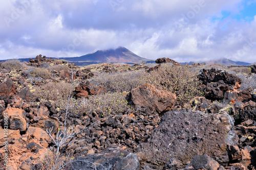 Foto Spatwand Zalm Landscape in Tropical Volcanic Canary Islands Spain