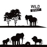 Elephant lion and ape african animals silhouetttes at savanna vector illustration graphic design