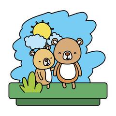 color couple bear nice wild animal