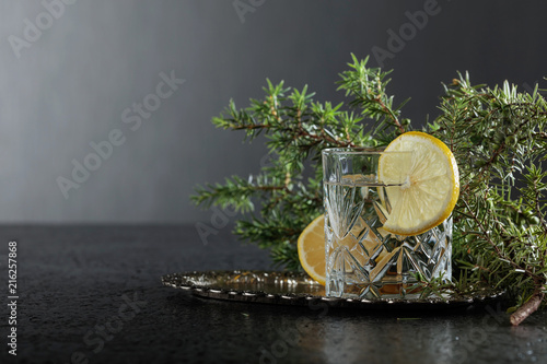 Leinwanddruck Bild Gin , tonic with slices of lemon and a sprig of juniper .