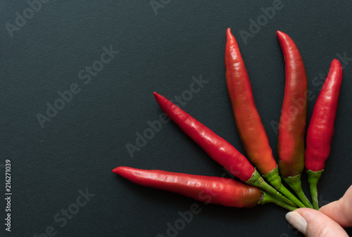Foto Spatwand Hot chili peppers Hand holding chillies