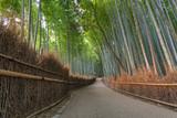 Bamboo Path in Arashiyama Kyoto Japan