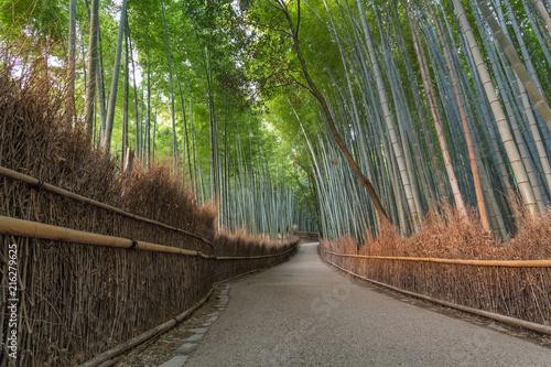 Canvas Bamboe Arashiyama Path