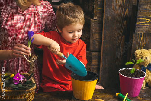 Foto Murales Kid concept. Kid learn planting flower in pot with soil. Little kid potting plants. Adorable kid with gardening tools. Gardeners have the best dirt