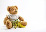 Brown Teddy bear toy and twig with yellow flowers.