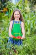 Leinwandbild Motiv Child and vegetables on the farm.