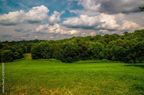 Fotobehang Donkergrijs Down the slope of Dog Hill