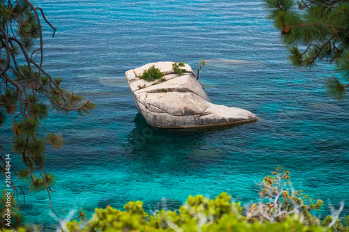 Plexiglas Tropical strand Bonsai Rock at Lake Tahoe