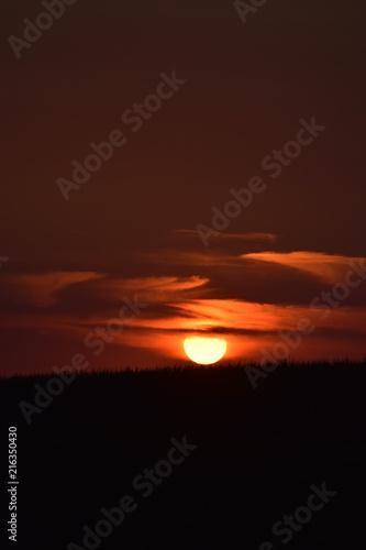 Fotobehang Bruin Sunset