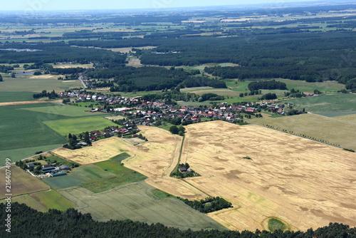 Fotobehang Beige Boock bei Löcknitz im Landkreis Vorpommern-GW