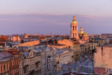 View from the roofs to St. Petersburg, the sights of the city from a height - 216417895
