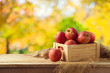 Red apples in wooden box on table