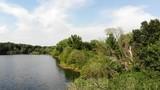 Kleiner idyllischer See im Wald - 216441650
