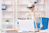 Skeleton businessman working in the office - 216454826