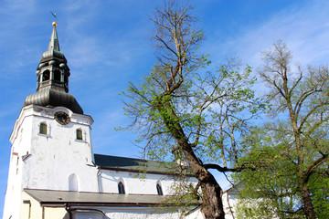 St. Mary Church Facade in Tallinn Estonia on a Sunny Spring Day