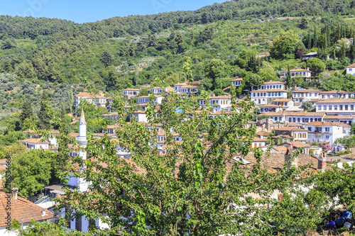 Aluminium Olijf Sirince village in Izmir, Turkey