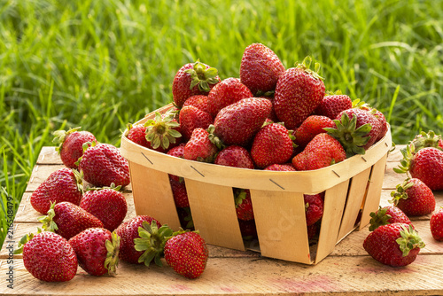 basket with strawberry home garden on the background of grass - 216548479