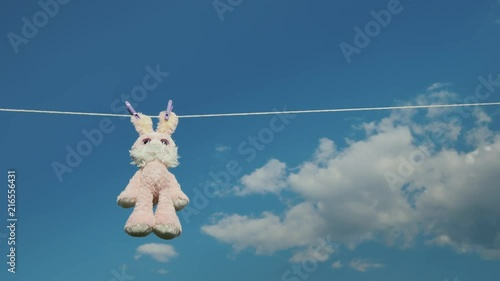 Plush rabbit hanging on a rope, dried in the sun