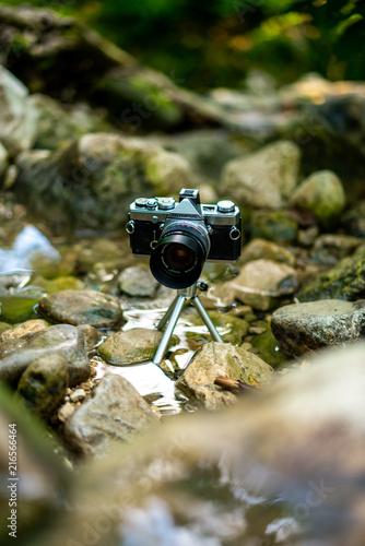 Foto Spatwand Kikker Beatiful camera in a stream
