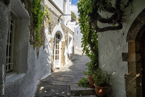 narrow street in greece with white houses and flowers
