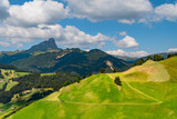 Summer mountain landscape with a path on a cultivated slope on a green hill and a lonely tractor in the Dolomites, La Valle, South Tyrol, Italy.