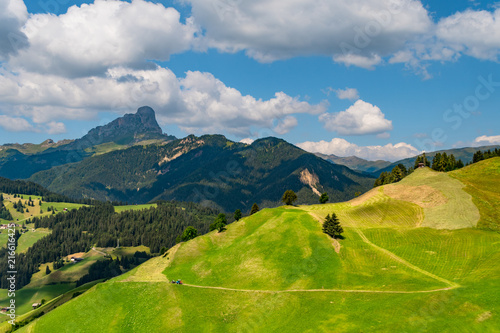 Fotobehang Bleke violet Summer mountain landscape with a path on a cultivated slope on a green hill and a lonely tractor in the Dolomites, La Valle, South Tyrol, Italy.