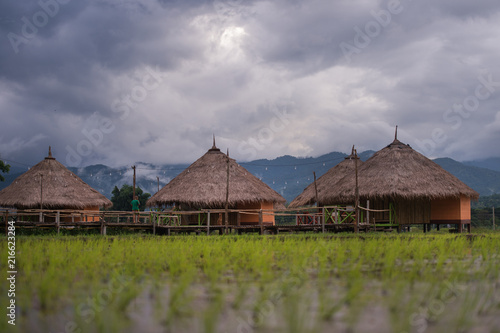 Plexiglas Bali Beautiful landscape nature green Terraced Rice Field of Rainy Season and hut on Mountain in nature,Chiang Dao, Chiang Mai, Thailand