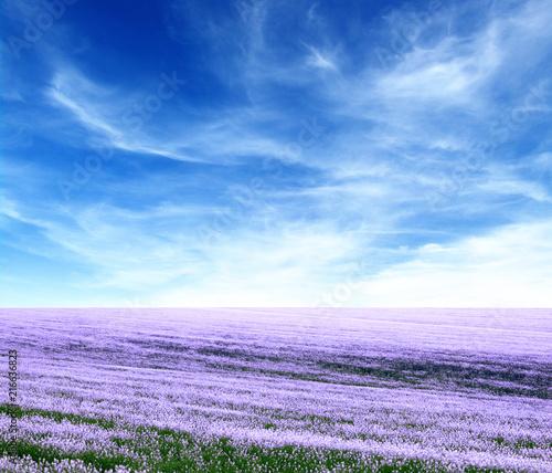 Aluminium Purper Spring flower field
