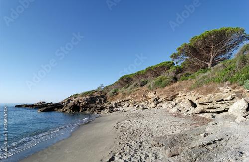 Fotobehang Donkergrijs Bravone creek in Corsica coast