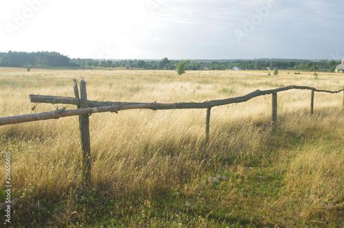 Canvas Zomer rural summer landscape
