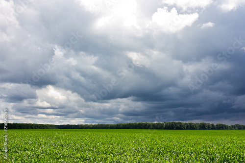 Canvas Lente Stormy sky and field