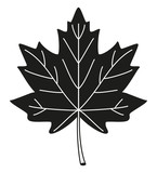 Black and white maple leaf silhouette
