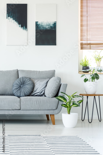 Plants next to grey couch in bright apartment interior with black and white posters. Real photo