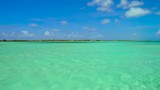 travel, seascape and nature concept - lagoon at tropical beach in french polynesia - 216675609
